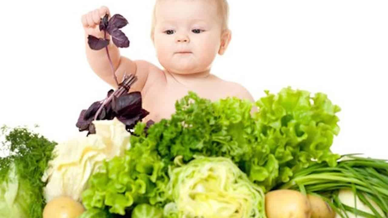 Vegan Parents Lose Their Baby 24