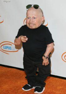 Mini-Me Austin Powers actor Verne Troyer dies aged 49 3